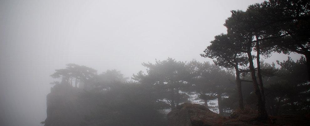 上黃山(二).霧鎖山頭山鎖霧 (2006/11/27)
