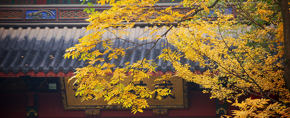 靈隱秋色.樓外樓美饌 (2006/11/29)